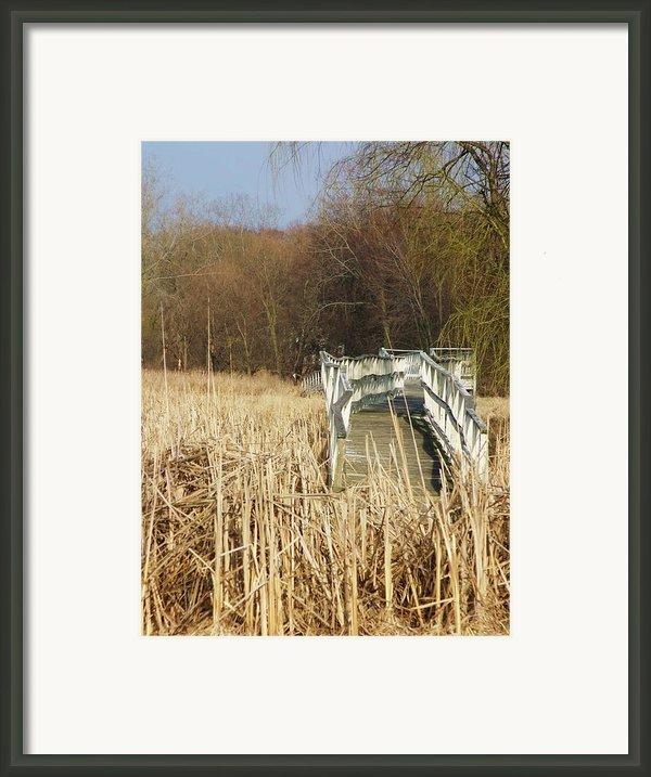 Boardwalk Ii Framed Print By Anna Villarreal Garbis