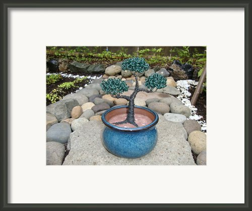 Bonsai Tree Small Round Planter Blue Framed Print By Scott Faucett