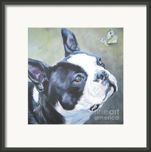 Boston Terrier Butterfly Framed Print By Lee Ann Shepard