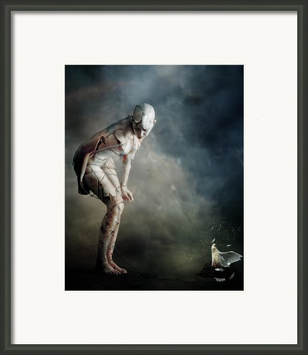 Bound Framed Print By Karen Koski