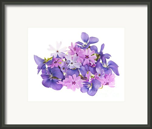 Bouquet Of Spring Flowers Framed Print By Elena Elisseeva