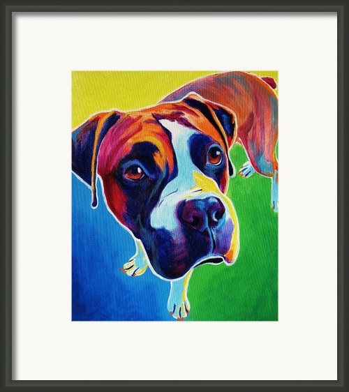 Boxer - Leo Framed Print By Alicia Vannoy Call