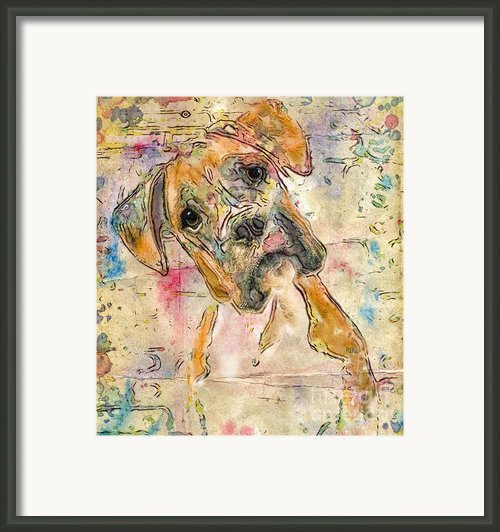 Boxer Babe Framed Print By Marilyn Sholin