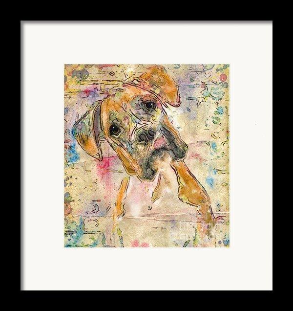 Boxer Babe Framed Print By Marilyn Sholin