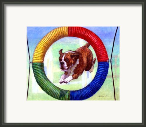 Boxer Dog Agility Class Framed Print By Olde Time  Mercantile