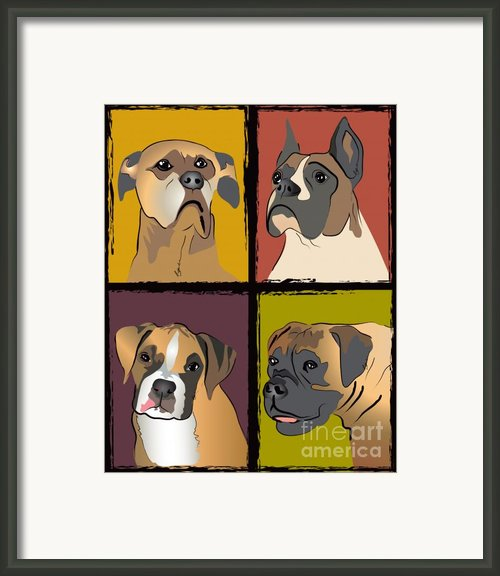 Boxer Dog Portraits Framed Print By Robyn Saunders