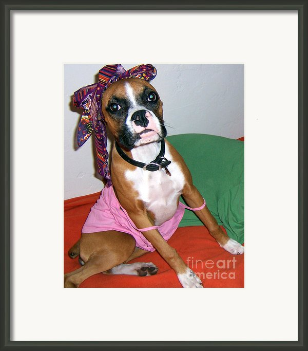 Boxer Girl Framed Print By Tisha Mcgee