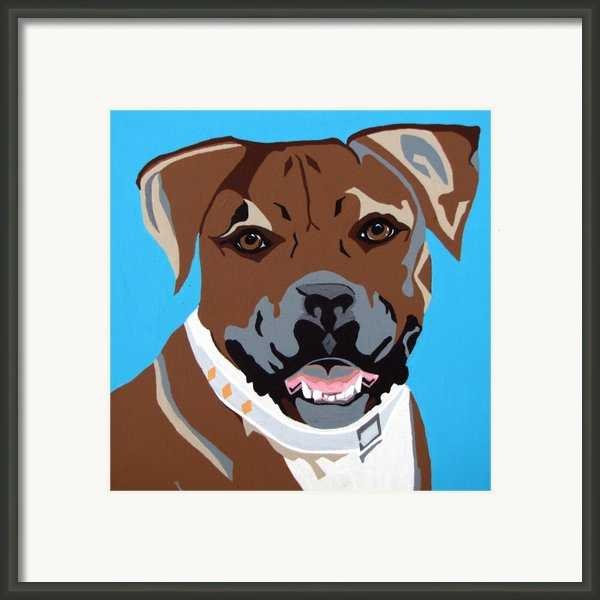 Boxer Framed Print By Slade Roberts