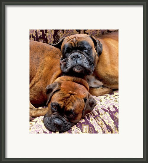 Boys Asleep Framed Print By Kenton Smith