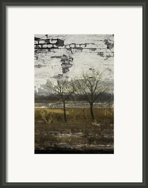 Broken Growth Framed Print By Larysa Luciw