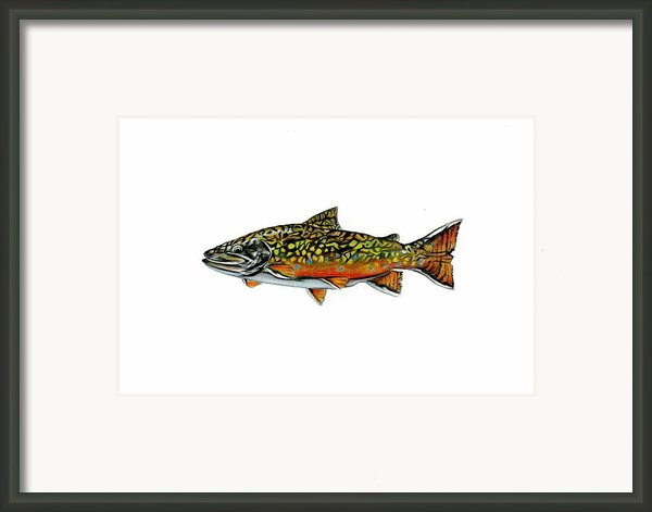 Brook Trout Framed Print By Jim  Romeo