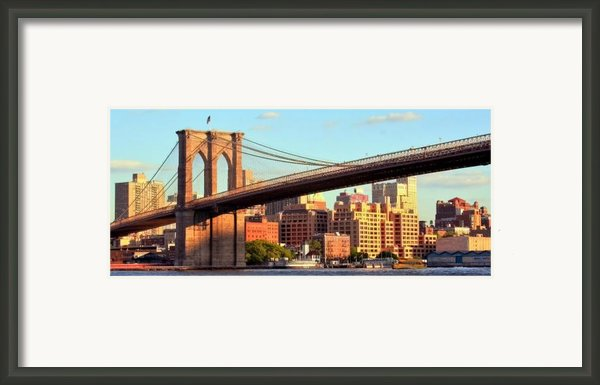 Brooklyn Framed Print By Mitch Cat