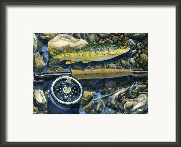 Brown Trout Rush Creek Framed Print By Mark Jennings