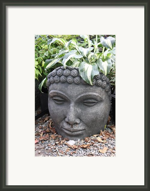 Buddha On A Hot Summer Island Day Framed Print By Brian Sereda