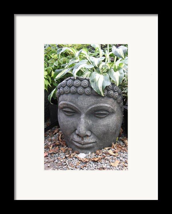 Buddha On A Hot Summer Island Day Framed Print By Brian Sereda