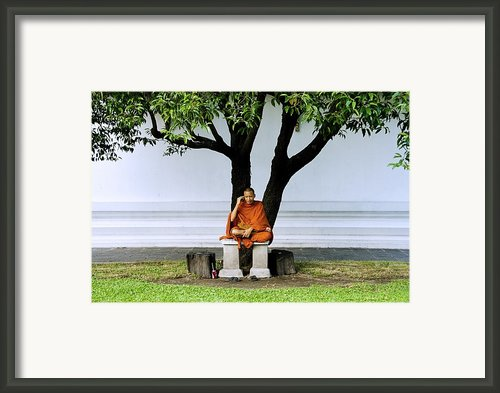Buddhist Monk Sits Under Tree Framed Print By Ray Laskowitz - Printscapes