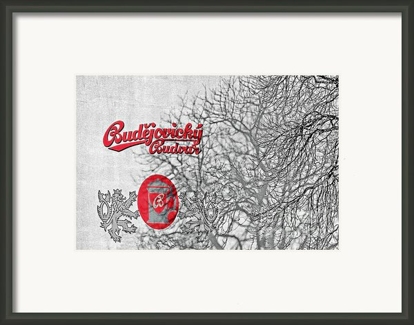 Budweis Czech Republic - 700 Years Of Brewing Tradition Framed Print By Christine Till