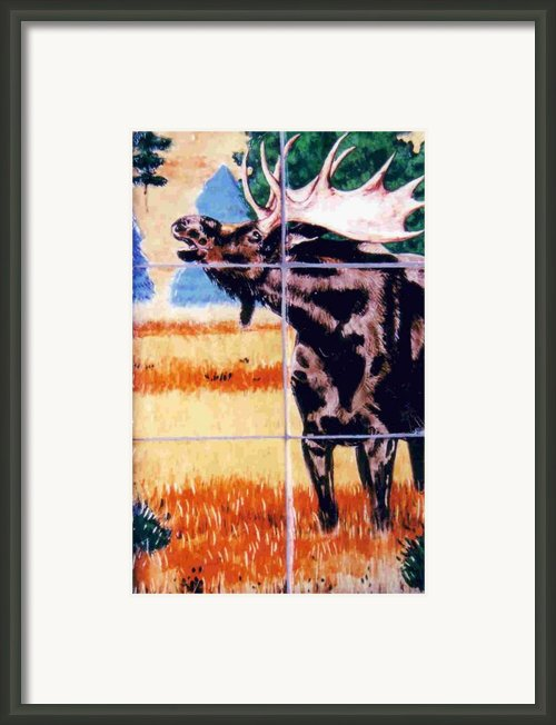 Bugling Moose Framed Print By Dy Witt