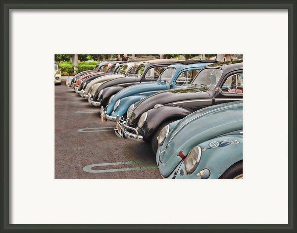 Bugs Framed Print By Bill Dutting