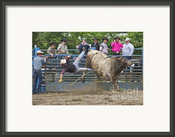 Bull 1 - Rider 0 Framed Print By Sean Griffin