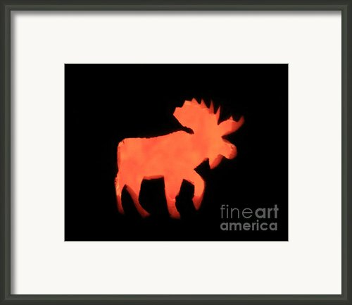 Bull Moose Pumpkin Framed Print By Lloyd Alexander