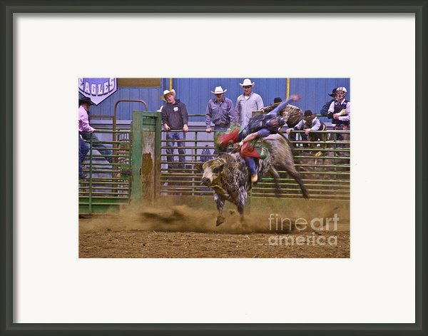 Bull Rider 1 Framed Print By Sean Griffin