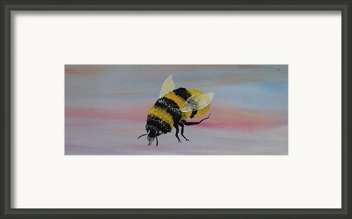 Bumble Bee Framed Print By Mark Moore