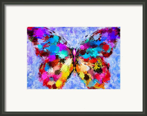 Butterfly 2 Framed Print By Yury Malkov