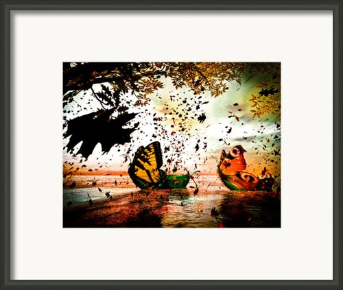 Butterfly Fairy Boats Framed Print By Bob Orsillo