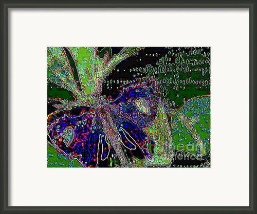 Butterfly In Rainforest Framed Print By Navo Art