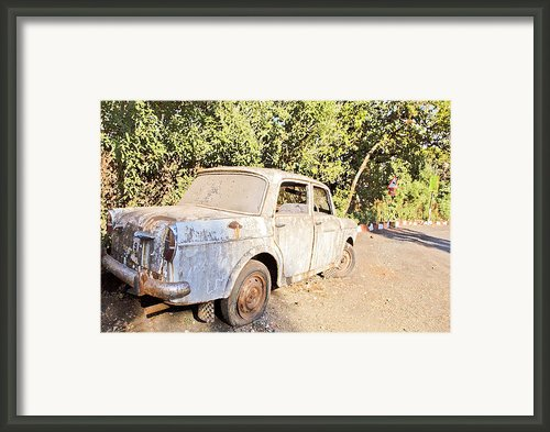 Buy Me Very Low Maintenace Framed Print By Kantilal Patel