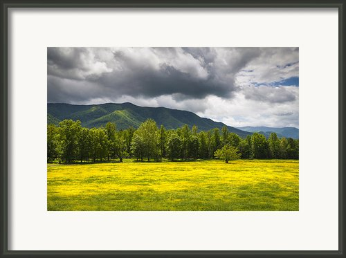 Cades Cove Great Smoky Mountains National Park Tn - Fields Of Gold Framed Print By Dave Allen