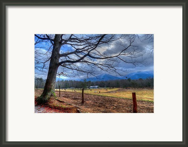 Cades Cove Lane Framed Print By Debra And Dave Vanderlaan