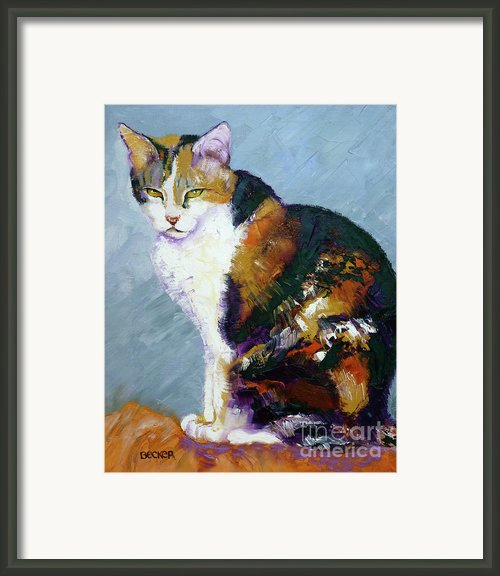Calico Buddy Framed Print By Susan A Becker