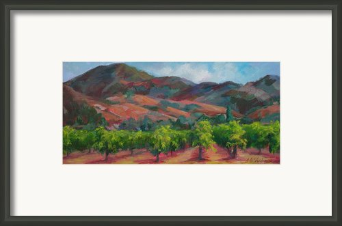 Calistoga Vineyards  Framed Print By Deirdre Shibano
