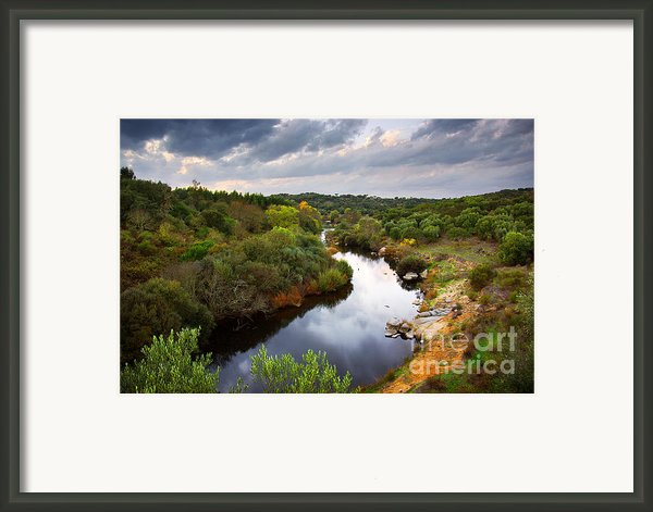 Calm River Framed Print By Carlos Caetano