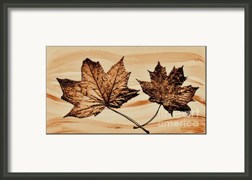 Canadian Leaf Framed Print By Marsha Heiken