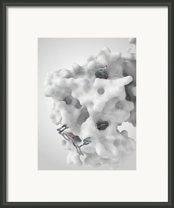 Cancer Protein And Drug Complex Framed Print By Ramon Andrade 3dciencia