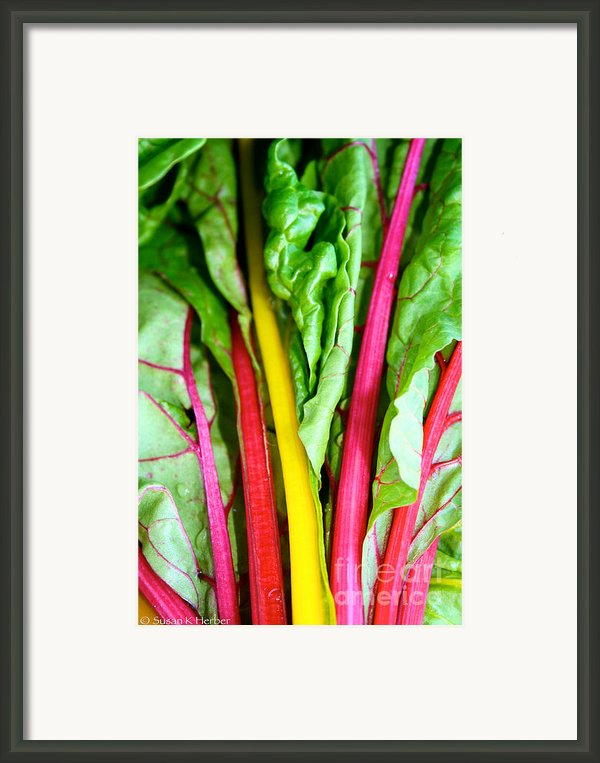Candy Color Greens Framed Print By Susan Herber