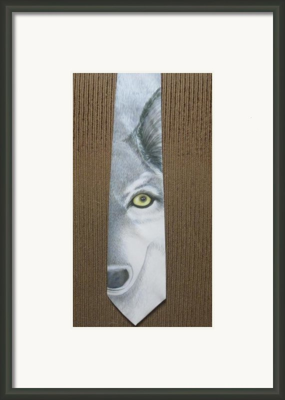 Canis Lupis Framed Print By David Kelly