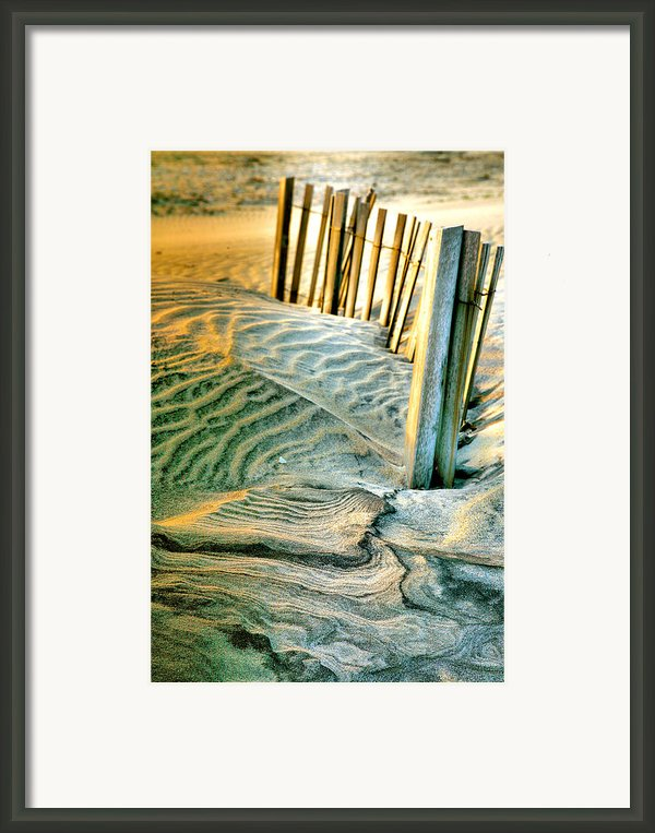 Cape Hatteras Dunes  Framed Print By Steven Ainsworth