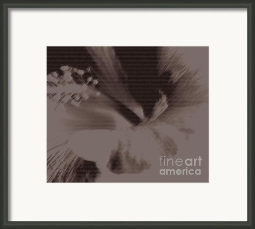 Cappuccino Framed Print By Linda Knorr Shafer