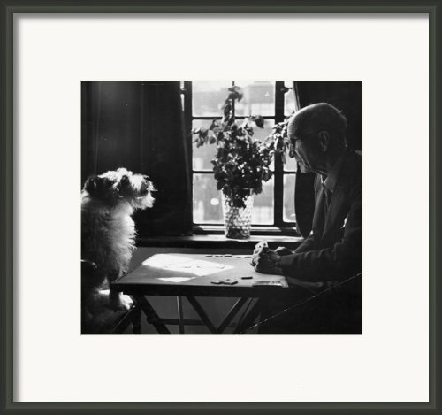 Card Shark Dog Framed Print By Charles Hewitt