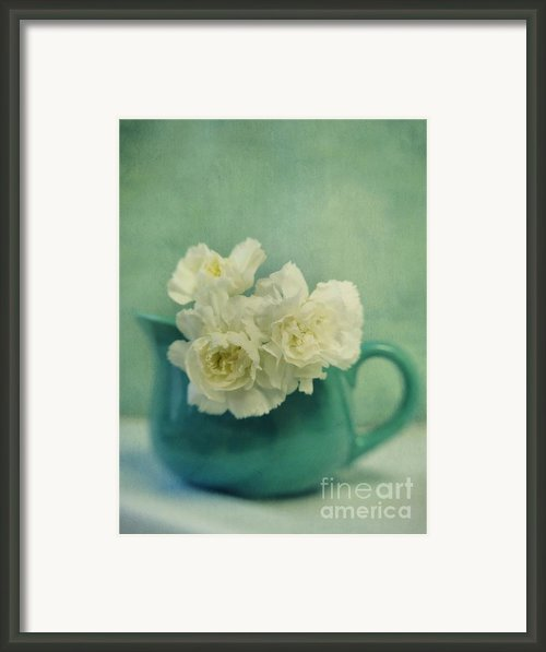 Carnations In A Jar Framed Print By Priska Wettstein
