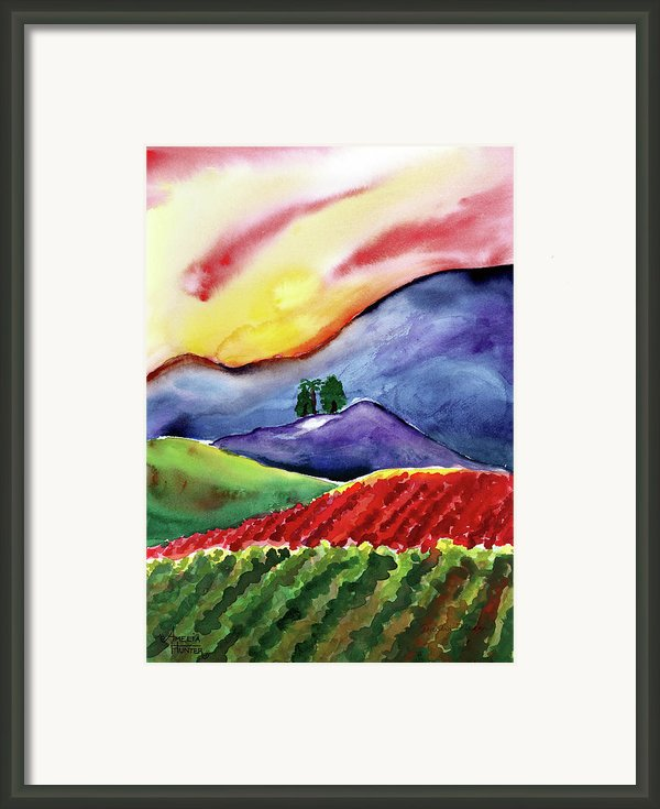 Carneros Sunset Framed Print By Amelia Hunter