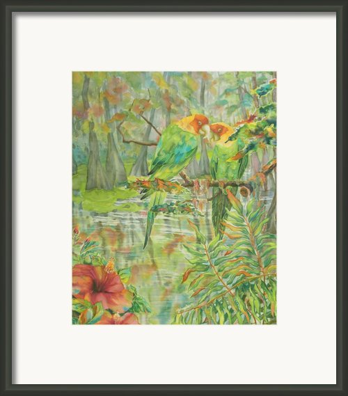 Carolina Parakeets Framed Print By Deborah Younglao