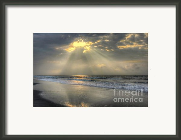 Carpe Diem Framed Print By Jeff Breiman