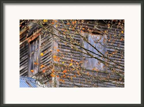Cass Mill   Framed Print By Thomas Schoeller