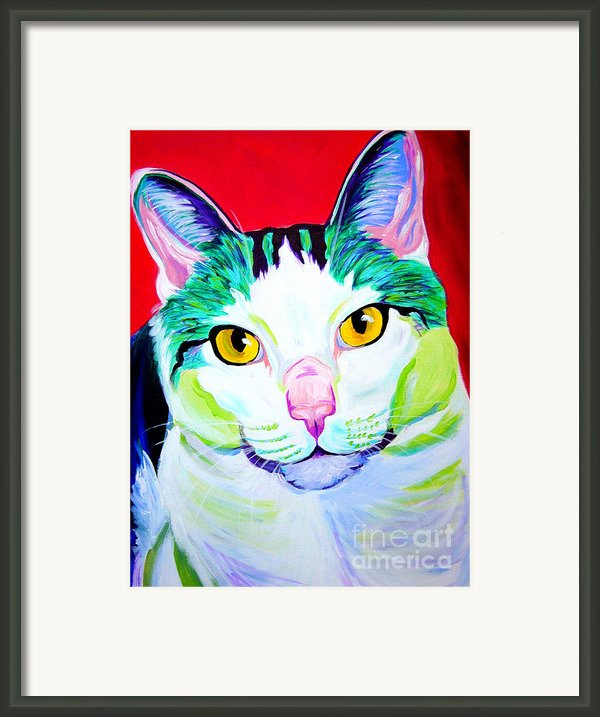 Cat - Zooey Framed Print By Alicia Vannoy Call