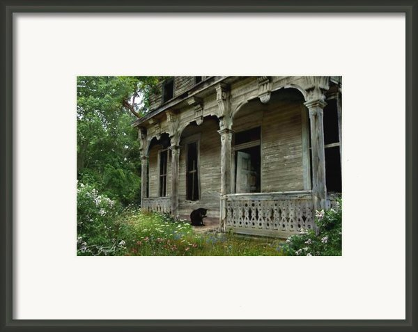 Cat House 2 Framed Print By Tom Straub